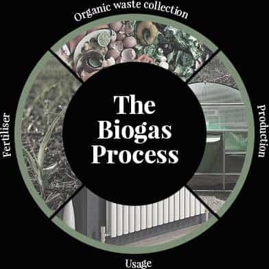 Understanding biogas