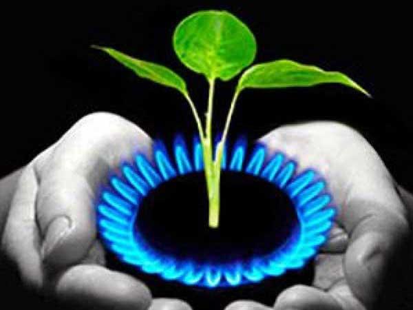 biogas Australia